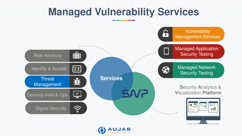 Managed-Vulnerability-Services-450.png